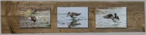 Canvas 3st 20x30cm, Naturplanka ca 30x140 cm